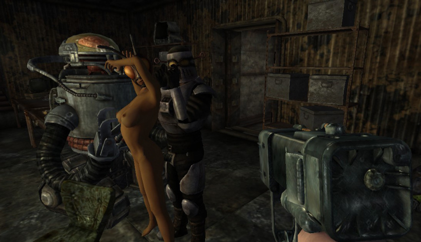 fallout or antagonizer mechanist 3 Alpha and omega lilly fanfiction